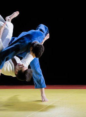 Judo Centre sportif Espace 1000 Sources
